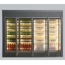 TC 100 DF GD - Camera frigorifică vitrată de congelare
