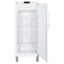 GGv 5010 - Freezer