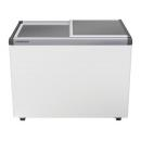 EFE 3000 | Chest freezer