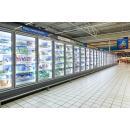 SMI Indus 05 1D - Freezing cabinet